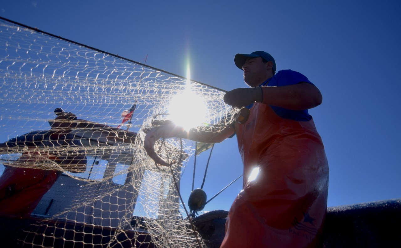 Small scale fishers in Chile